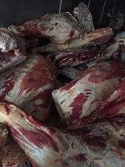 Мясо Говядина,  Свинина,  Баранина оптом из Хакасии от производителя